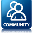 Community (group icon) glossy blue reflected square button — Stock Photo #56450455