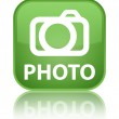 Photo (camera icon) glossy green reflected square button — Stock Photo #56652917