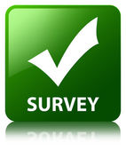 Survey (validate icon) glossy green reflected square button — Stock Photo