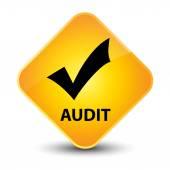 Audit (validate icon) yellow button — Stock Photo