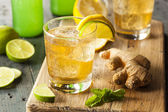 Organic Ginger Ale Soda — Stock Photo