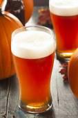 Frothy Orange Pumpkin Ale — Stock Photo