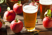 Hard Apple Cider Ale — Stock Photo