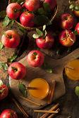 Organic Apple Cider with Cinnamon — Stock Photo