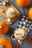 Autumn Pumpkin Spice Latte — ストック写真