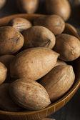 Raw Organic Whole Pecans — Stock Photo