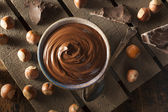 Homemade Chocolate Hazelnut Spread — Stock Photo