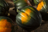 Raw Organic Green Acorn Squash — Stock Photo