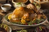 Whole Homemade Thanksgiving Turkey — Stock Photo