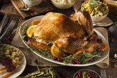 Hele zelfgemaakte Thanksgiving Turkije — Stockfoto