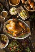 Whole Homemade Thanksgiving Turkey — Stock fotografie