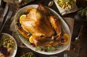 Whole Homemade Thanksgiving Turkey — Stock Photo