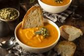 Homemade Autumn Butternut Squash Soup — Stock Photo