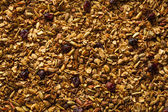 Healthy Homemade Granola with Nuts — Stock Photo