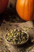 Raw Organic Pumpkin Pepita Seeds — Stock Photo