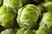 Raw Green Organic Brussel Sprouts — Stock Photo