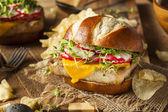 Homemade Vegetarian Soy Tofu Burger — Foto Stock