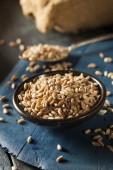 Organic Raw Farro Grain — Stock Photo