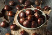Raw Organic Brown Chestnuts — Stockfoto