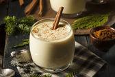 Homemade White Holiday Eggnog — Stock Photo