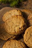 Biscoitos caseiros Gingersnap marrom — Fotografia Stock