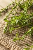 Raw Organic Green Savory — Stock Photo