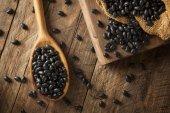 Organic Raw Dry Black Beans — Stock Photo