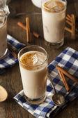 Homemade Horchata with Cinnamon — Stock Photo