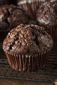 Homemade Dark Chocolate Muffins — Stock Photo