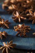 Organic Dry Star of Anise — Fotografia Stock