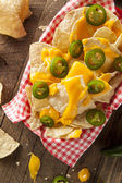 Homemade Nachos with Cheddar Cheese — Stock Photo