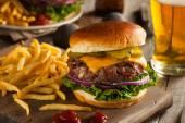 Grass Fed Bison Hamburger — Stock Photo