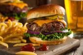 Grass gevoed Bison Hamburger — Stockfoto