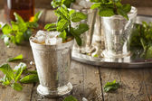Refreshing Cold Mint Julep — Stock Photo