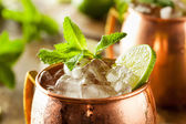 Icy Cold Moscow Mules — Stock Photo