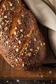 Organic Homemade Whole Wheat Bread — Foto Stock