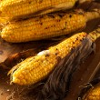 Grilled Corn on the Cob — Stock Photo #73954075