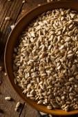 Raw Organic Hulled Sunflower Seeds — Stock Photo