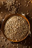 Raw Organic Hulled Sunflower Seeds — Stock Photo