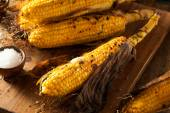 Grilled Corn on the Cob — Stock Photo