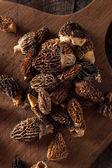 Raw Organic Morel Mushrooms — Stock Photo
