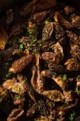 Organic Sauteed Morel Mushrooms — Stock Photo