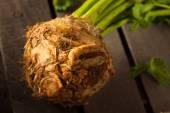 Raw Organic Celery Root — Stock Photo