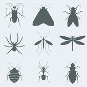 Insects — Vecteur