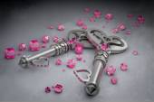 Two love keys — Stock Photo