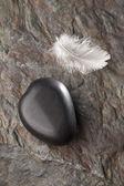 Kamienne serce z piór — Zdjęcie stockowe