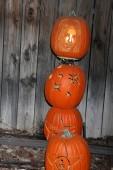 Shakira Carved Pumpkin — Stock Photo