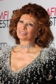 Sophia Loren — Stock Photo