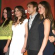 Постер, плакат: Alexandra Park Elizabeth Hurley William Moseley Merritt Patterson