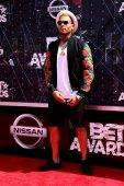 Chris Brown — Foto de Stock